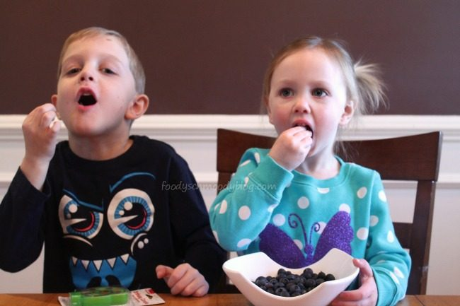 Making Little Changes in 2015 {With Blueberries}
