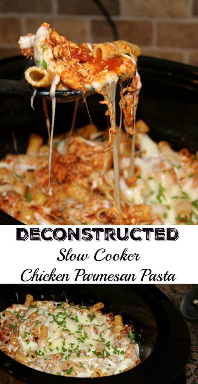 slow cooker chicken stock slow cooker soy braised chicken slow cooker ...