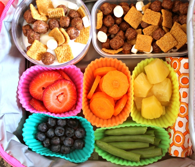 Lunch Box Idea For A Picky Kid