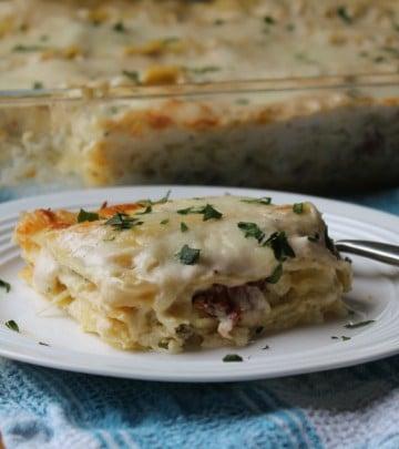 Alfredo Lasagna Plated